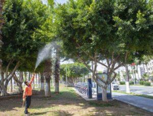 Mersin'de Sıcaklıkların Artışı Haşereyi Artırdı, Büyükşehir İlaçlamaya Hız Verdi