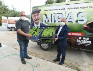 Tarsus Belediyesi 300 Bin Fide Dağıttı