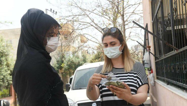 Yenişehir Belediyesinden Ev Hanımlarına Ek Gelir İmkanı: Defne Yaprağı Ayıklama Projesi 2 - yenisehir belediyesinden ev hanimlarina ek gelir imkani defne yapragi ayiklama projesi 2