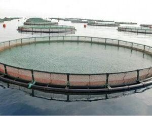 Aydıncık'ta Balık Çiftliklerinin Kurulmasına Danıştay Dur Dedi!
