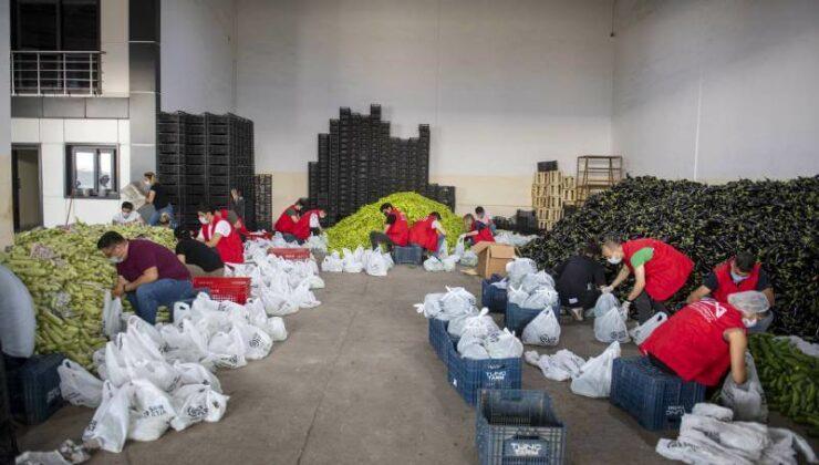 Mersin Büyükşehir, Üreticinin Elinde Kalan Sebzeleri İhtiyaç Sahiplerine Ücretsiz Dağıtılıyor