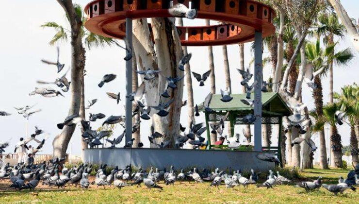 Mersin Büyükşehir'den Adnan Menderes Sahili'ne Kuş Evi
