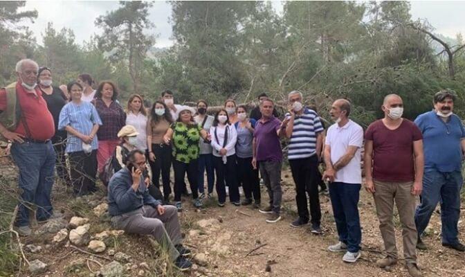Mersin Yenişehir'deki Orman Katliamı Yargıya Taşındı!