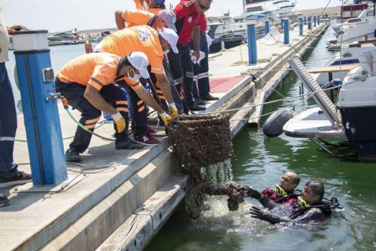 Mersin Büyükşehir'den Marina'da Deniz Temizliği 6 - mersin buyuksehirden marinada deniz temizligi 3